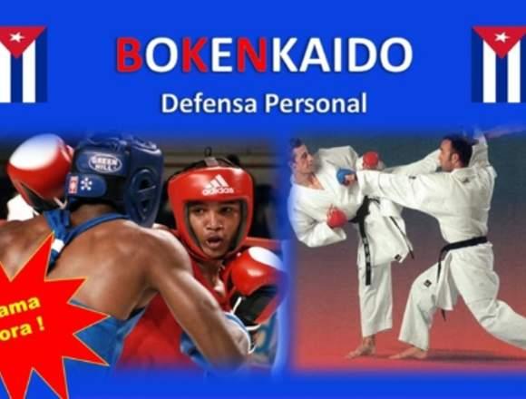Defensa personal integral