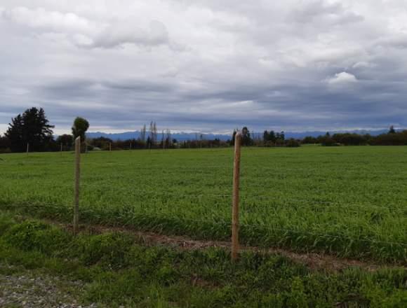 Se vende parcela de agrado Coihueco km12