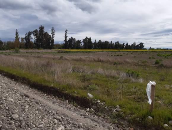 Se vende parcela de agrado camino a Coihueco km5