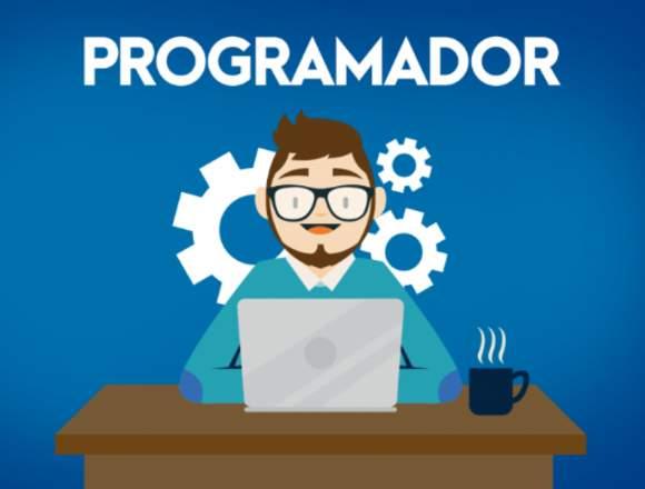 Se solicita Programador