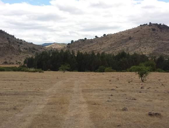 Parcelas Valle Rauco