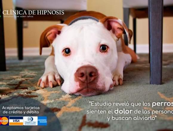 hipnosis Quito, terapia para superar el dolor
