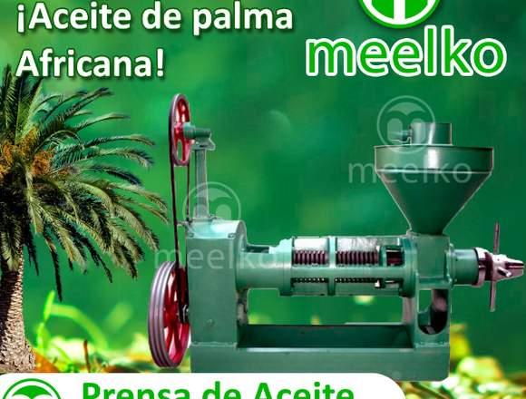 Prensa de Aceite MKOP120 Meelko
