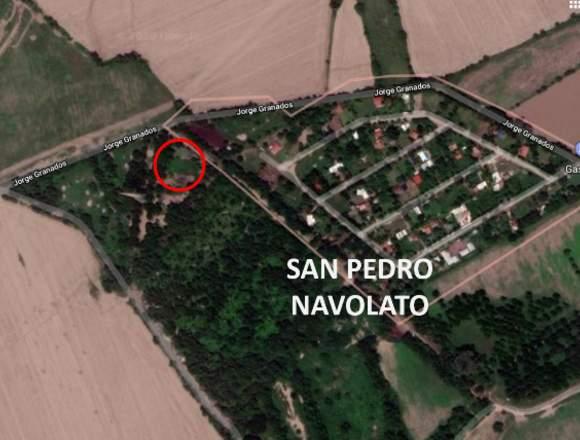 SE VENDE LOTE CAMPESTRE, SAN PEDRO