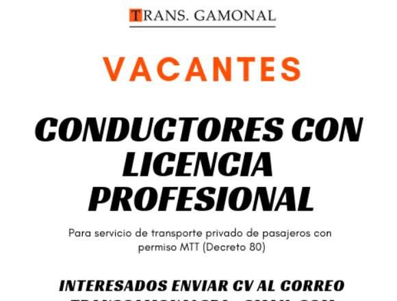 Conductor Profesional para Transporte Privado