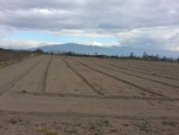 Terreno de Venta en el sector de Malchingui