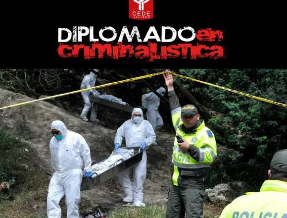DIPLOMADO EN CRIMINALISTICA