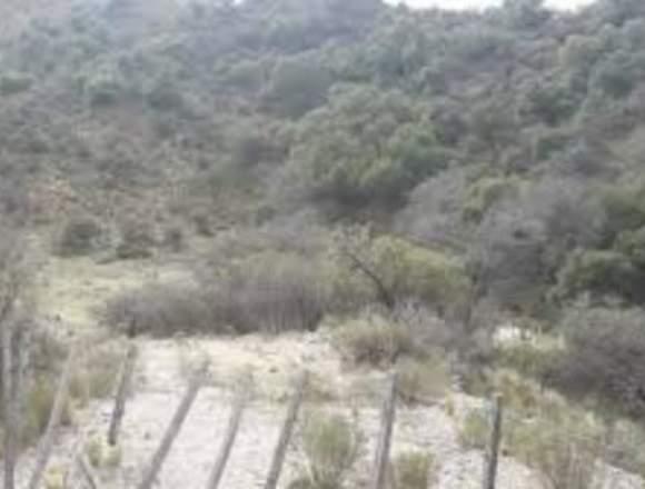 Vendo hectareas zona turistica