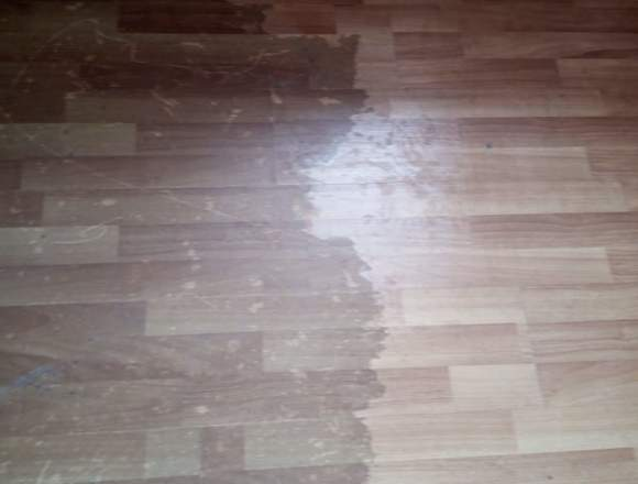 Alseco30chile Limpieza de alfombras y tapices.