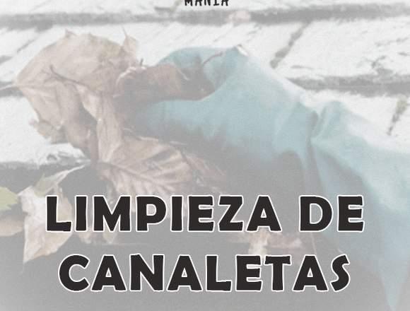 Techumbre / Limpieza de Canaletas
