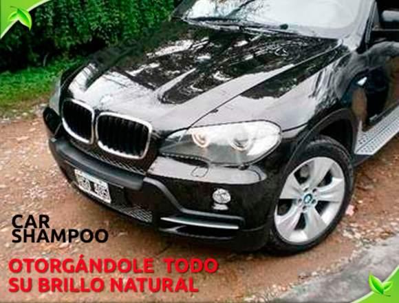 Shampoo Para Autos - Ecologico Con Cera -