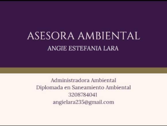 Servicio de asesoría ambiental