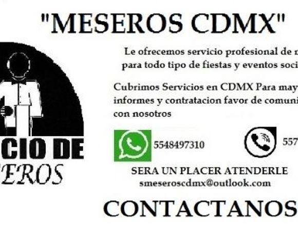SERVICIO PROFESIONAL DE MESEROS
