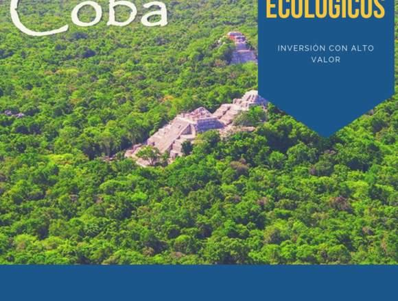 Kobá Terrenos ecológicos