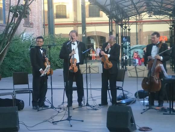 Violinistas profesionales eventos sociales