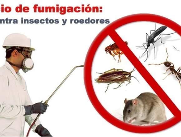 Desratizacion Y Fumigacion, Control de Plagas