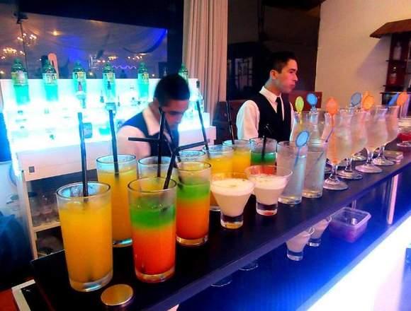 Servicio de cocteles - Barra móvil -  Bartender