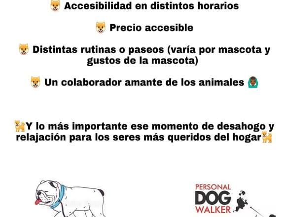 Servicio Paseador de Perros