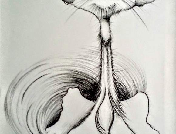 Profesor de bellas artes, pintura y dibujo