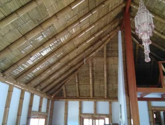 Casa de playa Amoblada, avistamiento de Ballenas