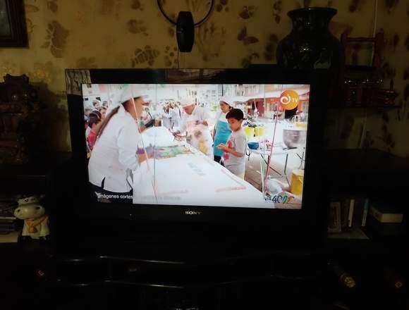 televisor 21 SONY BRAVIA