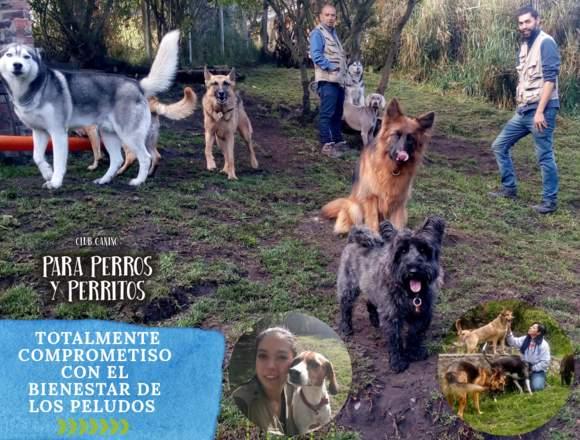 Colegio hospedaje Canino PARA PERROS Y PERRITOS