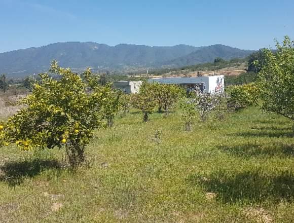 Parcela con Casa y Cabaña, 1 hectarea, Hipotecario