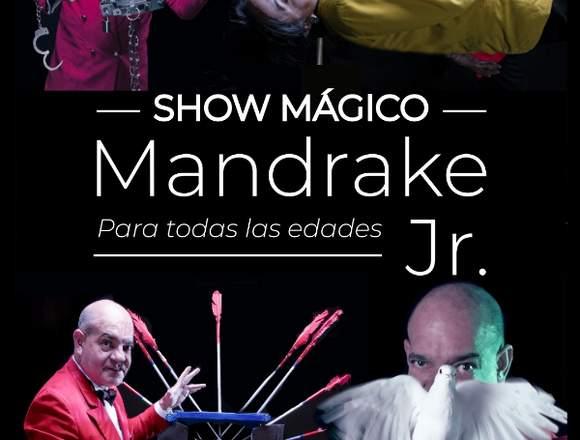 Mago Mandrake Jr. Show mágico.