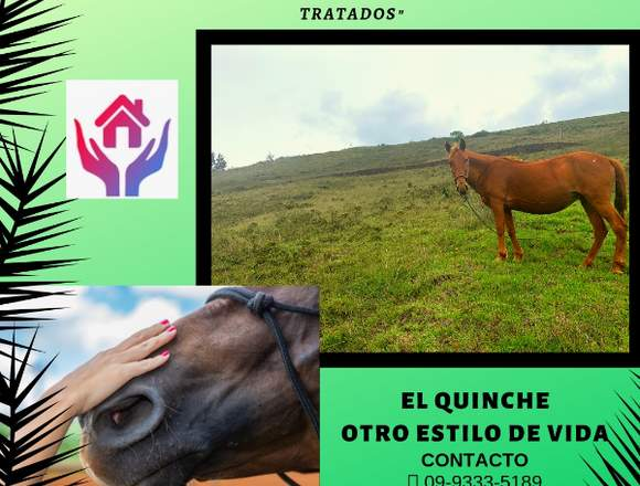 Lotes de terrenos- El Quinche