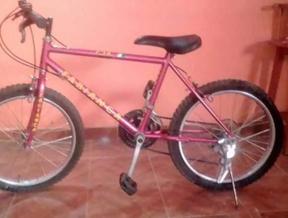 Bicicleta Montañera rin 21