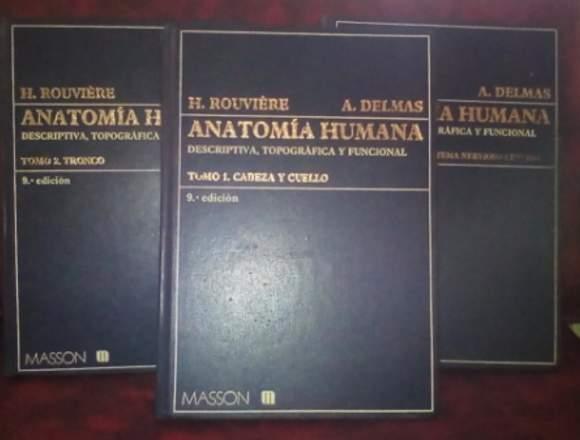 REMATO Anatomia Humana Rouviere 9na edición