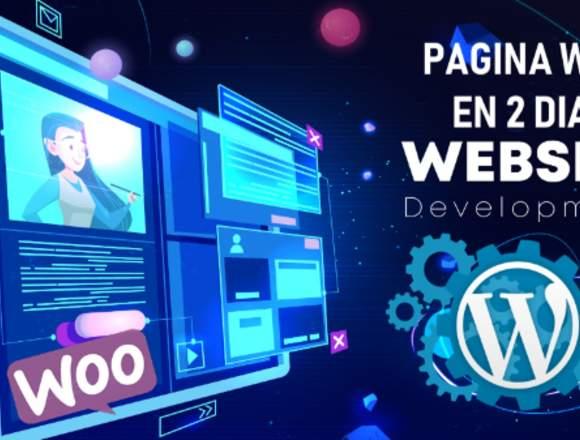 Diseño Web Páginas Web Económica 2 Dias