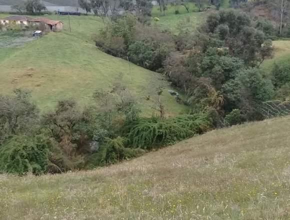 VENDO EXCELENTE PROPIEDAD EN GUATAVITA