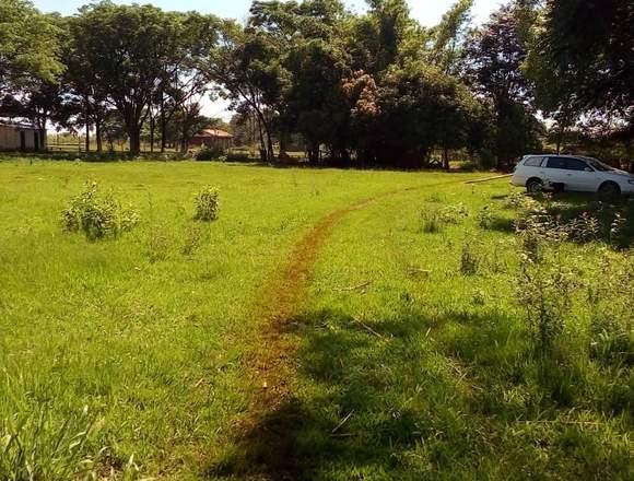 Terreno de 5 hectáreas
