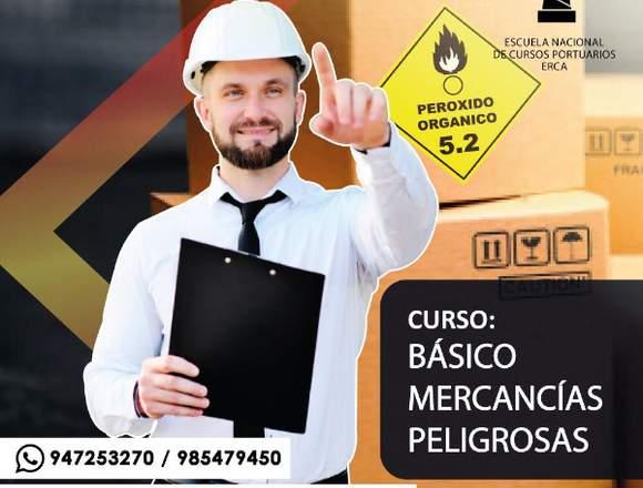 ERCA CURSO BASICO DE MERCANCIA PELIGROSA