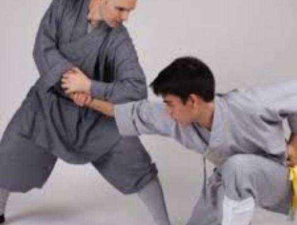 Kung Fu, Sanda y Tai Chí
