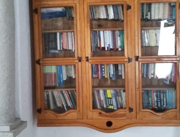 Separador de Ambiente y Librero de estilo rústico