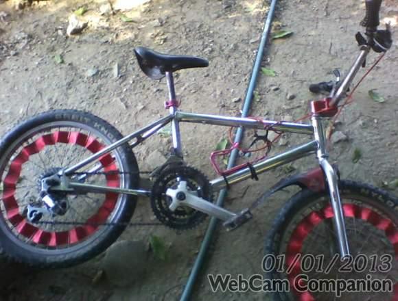 bicicleta rin 20  usada