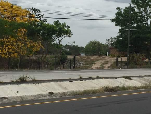 VENDO LOTE  EN SANTA CLARA 3.2 HECTÁREAS