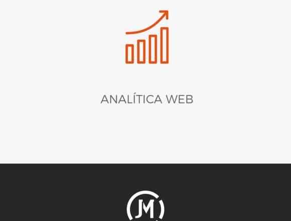 Servicio Analítica Web