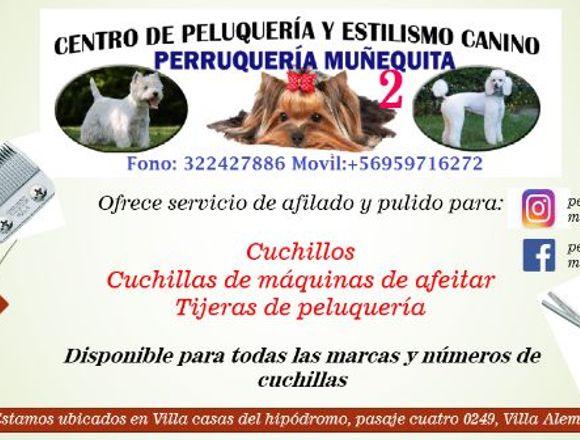 SERVICIO PARA AFILADO Y PULIDO DE CUCHILLAS