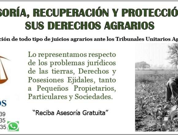 Abogados Agrarios en Guadalajara