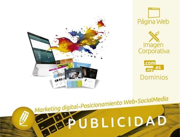 Páginas Web y Sistemas Web, Marketing Digital