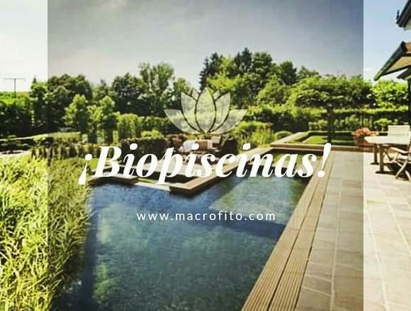 Diseño y construcción de Biopiscinas