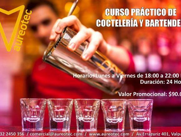 Curso Práctico de Coctelería y Bartender