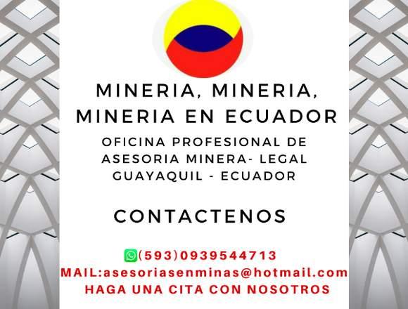 TRAMITES DE MINERIA EN ECUADOR GUAYAQUIL
