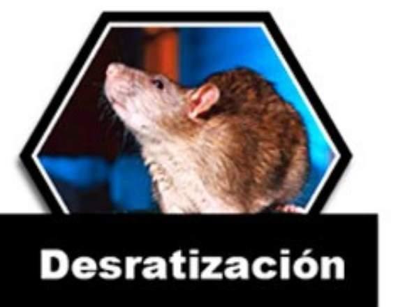 !!FUMIGACION SEGURA PARA TU FAMILIA Y MASCOTAS¡¡