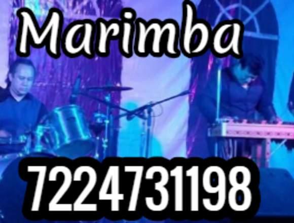 Marimba Grupo Versatil Metepec Toluca San Mateo A