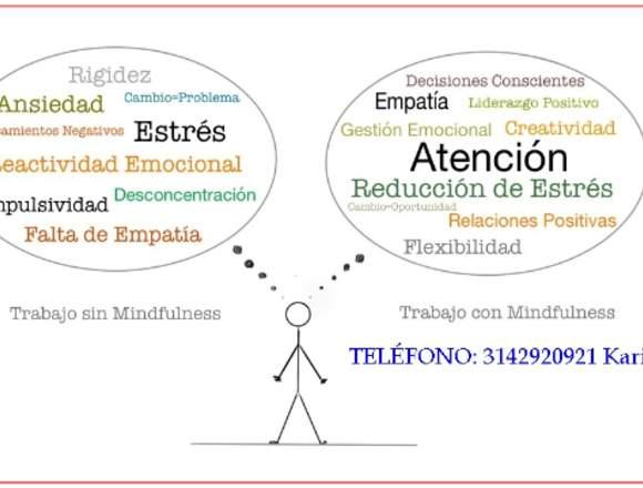 Curso de Mindfulness profesora titulada en Europa