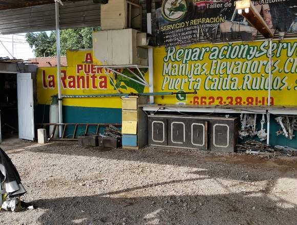 La Ranita auto puerta 6623-38-81-19